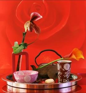 Home Flor You