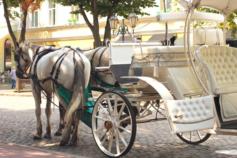 louer une calche mariage - Mariage En Caleche