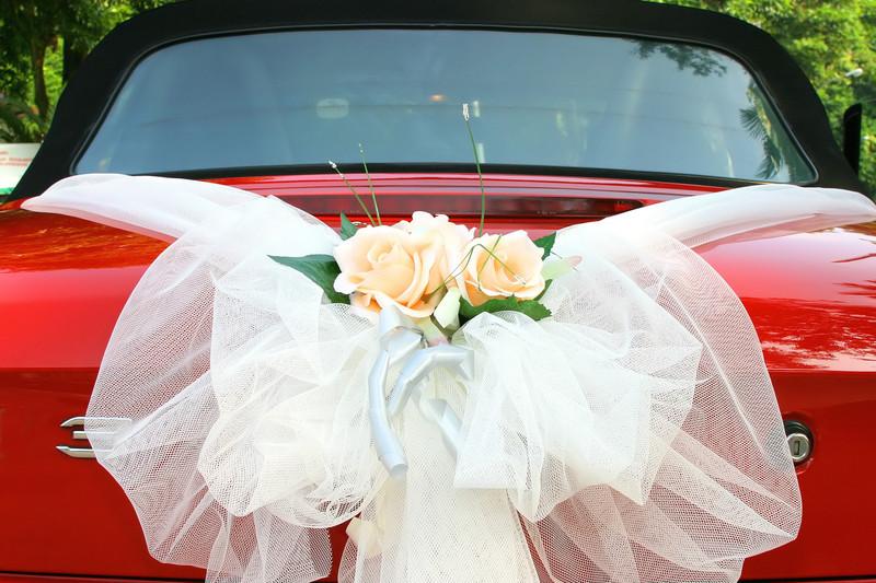 ... voiture pour un mariage gay ou lesbien  Mon mariage gay et lesbien