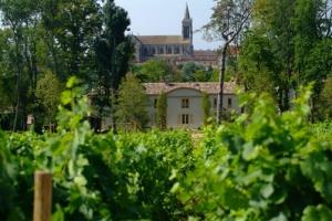 chateau-des-broyers-cote-vigne